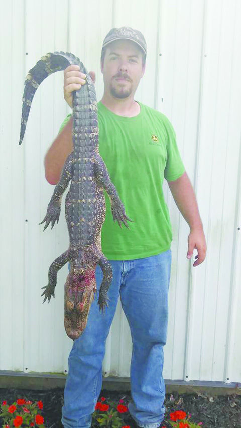 "Nathan Dailey poses with the ""gator"" found earlier this week on his father's property."