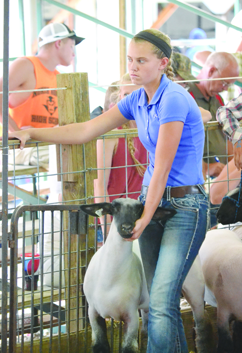 One of the tough moments of fair week is the goodbye between the young  people and their animals.  Here, Madee Shipley gets set to take her sheep into the sale arena.
