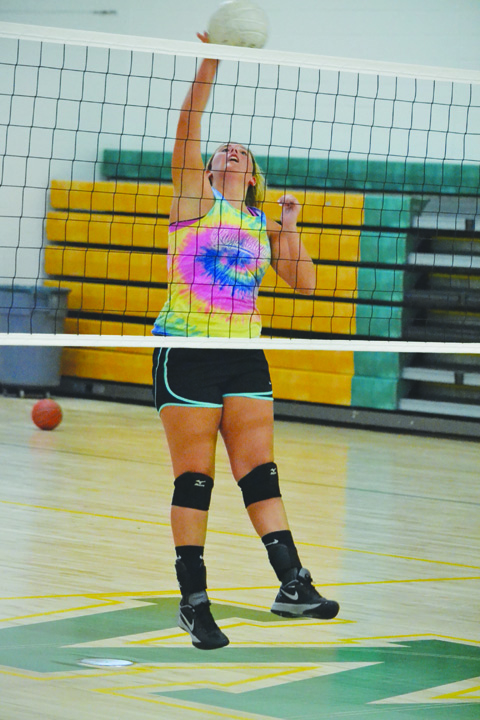 Kendall Gallowitz is one of three seniors who will need to bring leadership to the 2016 West Union Lady Dragons volleyball squad.