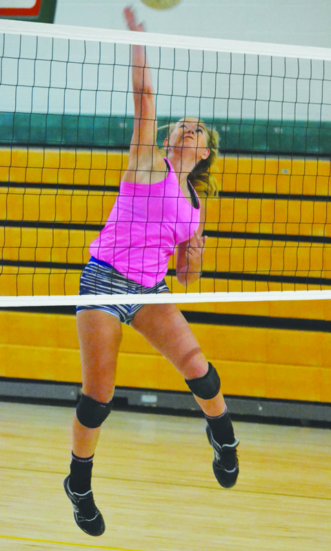 Jaycee Baldwin will be counted on as one of the big hitters for the 2016 Lady Dragons' volleyball squad.