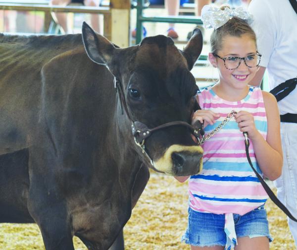 Plans For Adams County Fair Remain Undecided Amid COVID-19